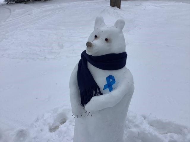 Best Snow Pet